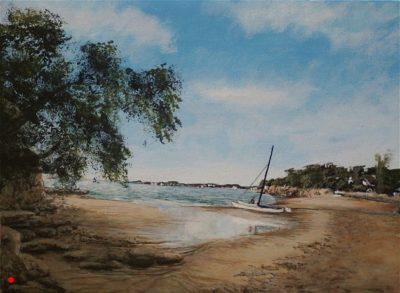 Harry at Castor Bay