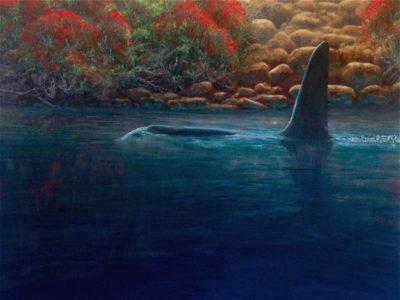 Pohutukawa Orca, Acrylic, on canvas mount, 76 x 101 cm / 30 x 40 inches